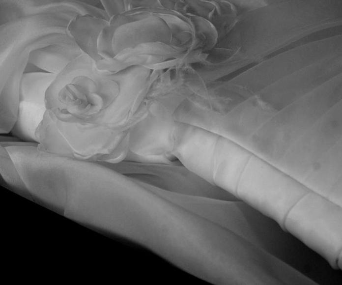 Limpieza de vestidos de novia: Servicios  de Tintorería Anubis