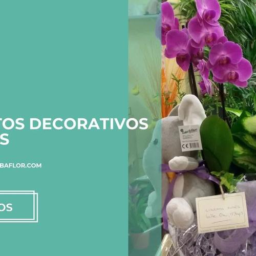 Venta de flores en Sabiñánigo