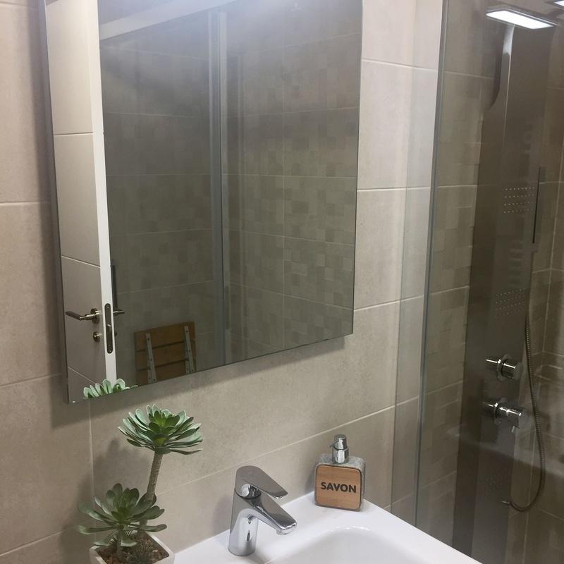 Reformas de baños: Servicios de Paramentia
