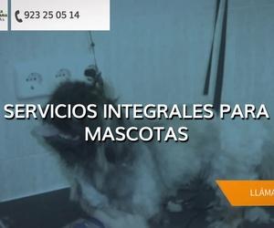 Veterinarios en Salamanca | Clínica Veterinaria Pereña