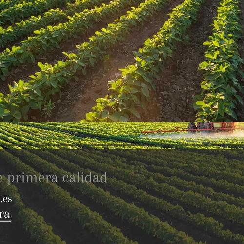 Insecticidas agrícolas en Ciudad Real |Semiagro