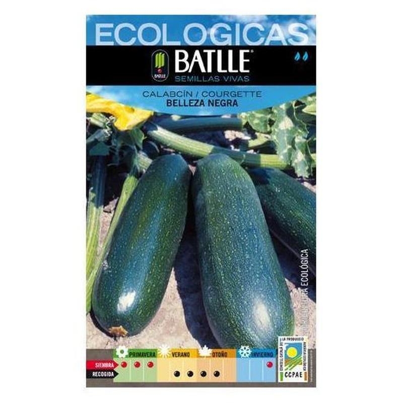 Semillas ecológicas de Calabacín Belleza negra Ref.5