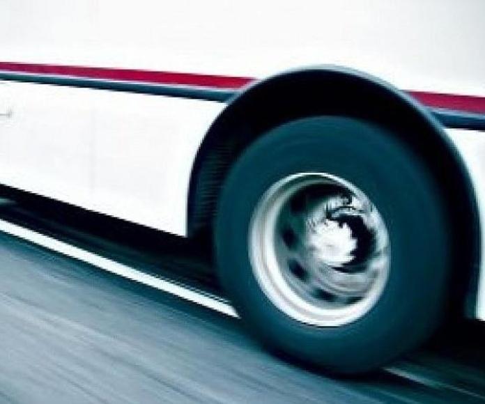 Minibuses: Servicios de Scipon Bus