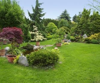 Sistemas de riego: Servicios de Plantas Benalla