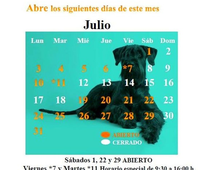 Narval Mascotas peluquería canina y felina Leganes | CALENDARIO JULIO 17