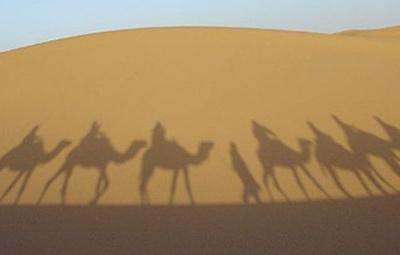 Todos los productos y servicios de Agencia de viajes: XL Viatges a Mida, S.L.