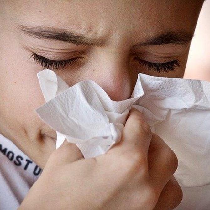 La lucha contra la gripe en la oficina comienza con una empresa de limpieza