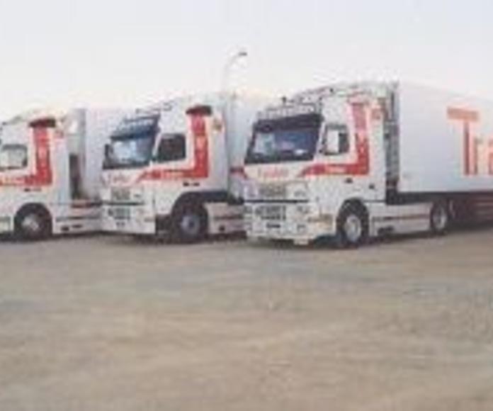 Transportes nacionales: Transportes de Transleón