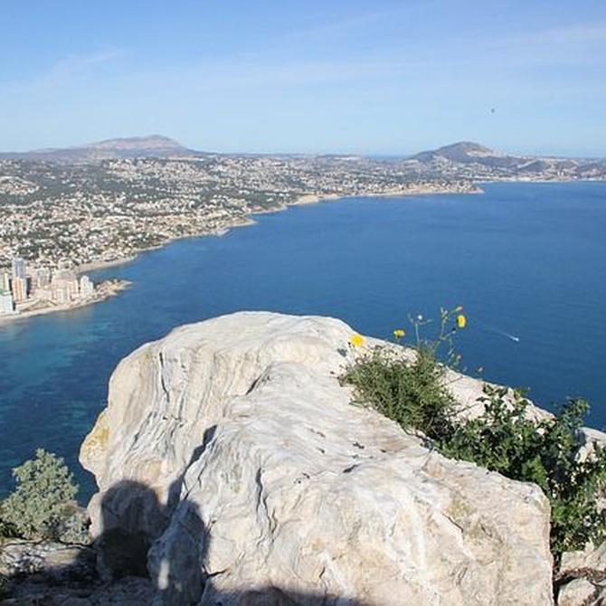 Alicante, el lugar perfecto para los toldos vela