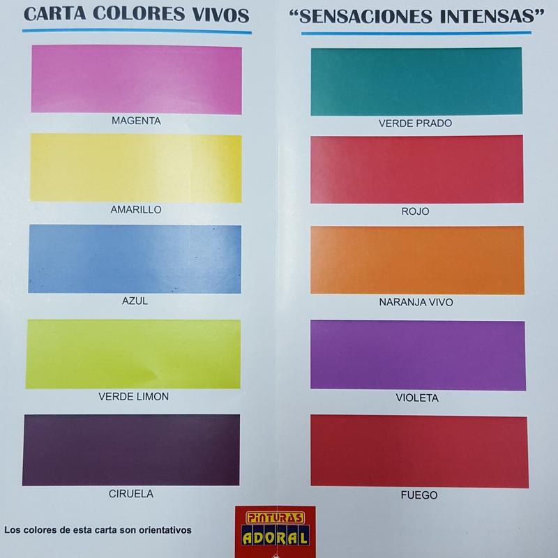 Carta de Colores Vivos: Servicios y productos de Hnos. Guerrero, S.L.