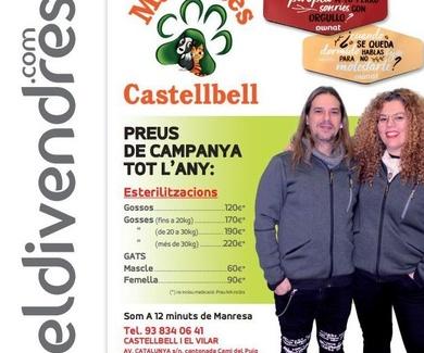 Esterilizaciones y castraciones PRECIOS DE CAMPAÑA TODO EL AÑO en Mascotes Castellbell