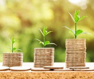 Los planes de pensiones han captado 420 millones de euros