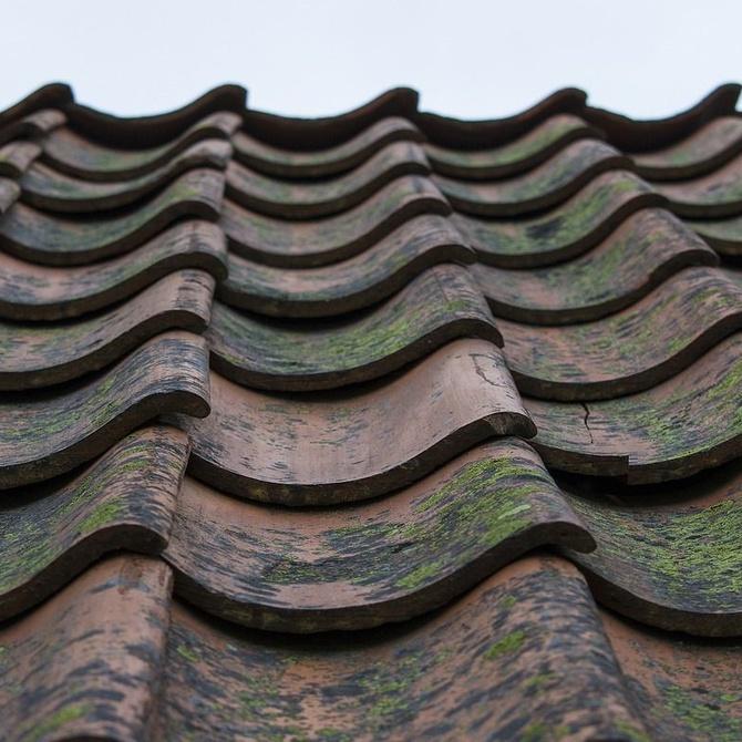 Los tipos de cubiertas o tejados más utilizados