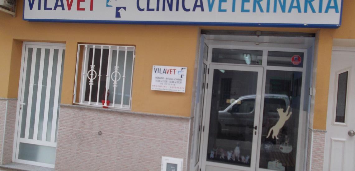 Vilavet, clínica con veterinario de urgencias en Vilamarxant