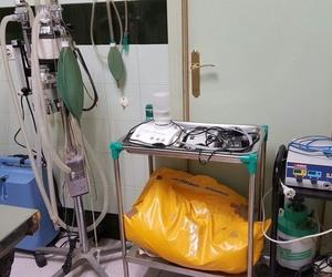 Quirofano Clínica Veterinaria Benicalap