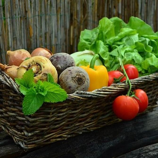 Verduras en los restaurantes