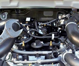 Cambio de aceite: Servicios de Taller Mecánico Chriscars