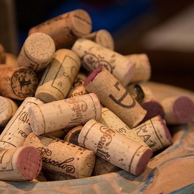 Cajas de cartón para transporte de vino