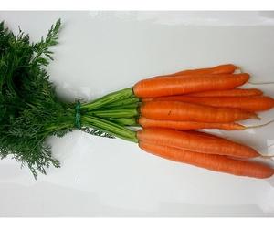 Zanahorias en manojo
