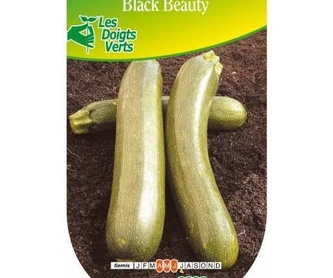 ALCACHOFA: Productos de Danimayos Crea Tu Jardin