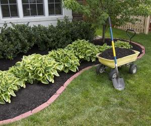 Expertos en jardinería en Toledo