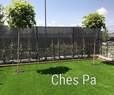 Proyecto integral paisajismo con césped artificial