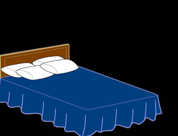 BIOCHEMICAL aplica con éxito tratamiento ecológico contra Chinches de la cama