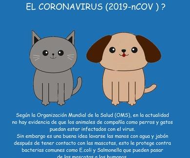 CORONAVIRUS Y ANIMALES DOMÉSTICOS