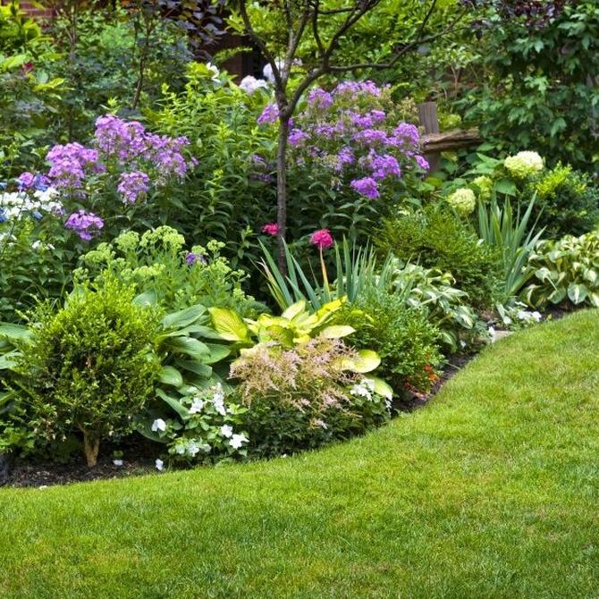 ¿Qué le aporta un jardín a nuestra comunidad de vecinos?