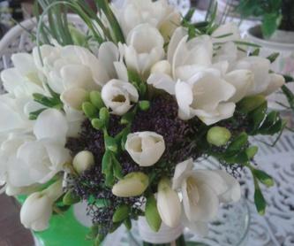 Peonias blancas: Catálogo de El Jardín de Churruca
