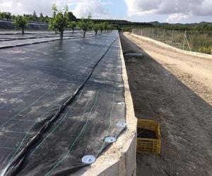 Construcción de invernaderos en Alicante | Mateo e Hijos