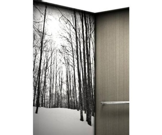 Mantenimiento de ascensores: Servicios de Ascensores Marín