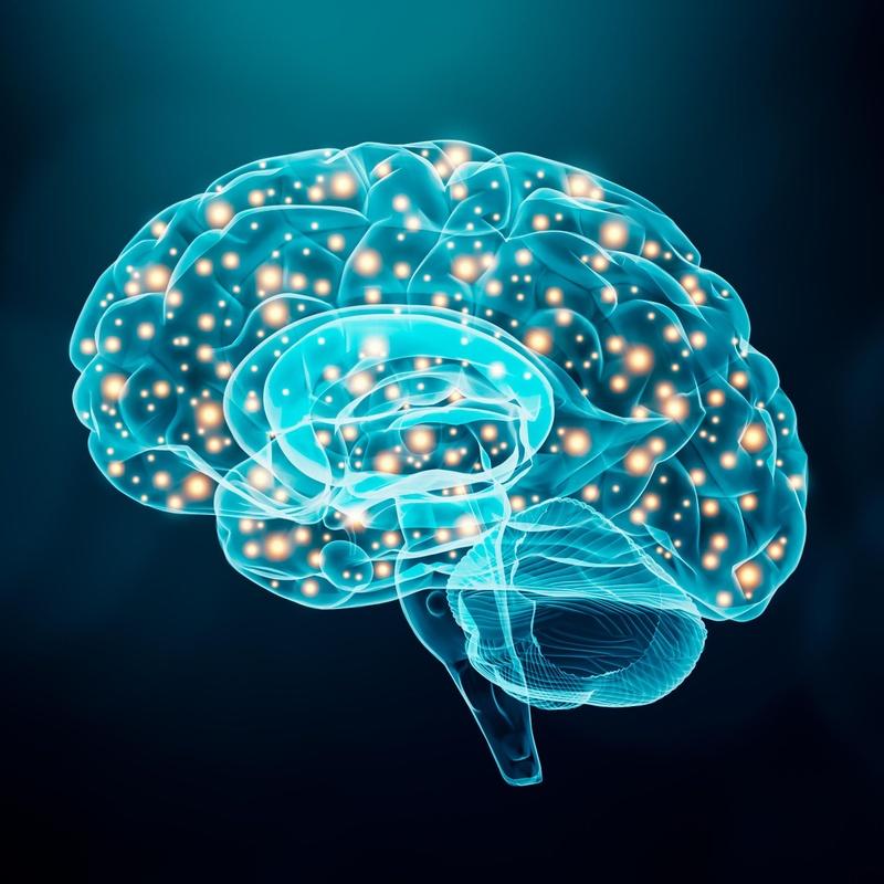 Neurología: Servicios de AIRE VALENCIA
