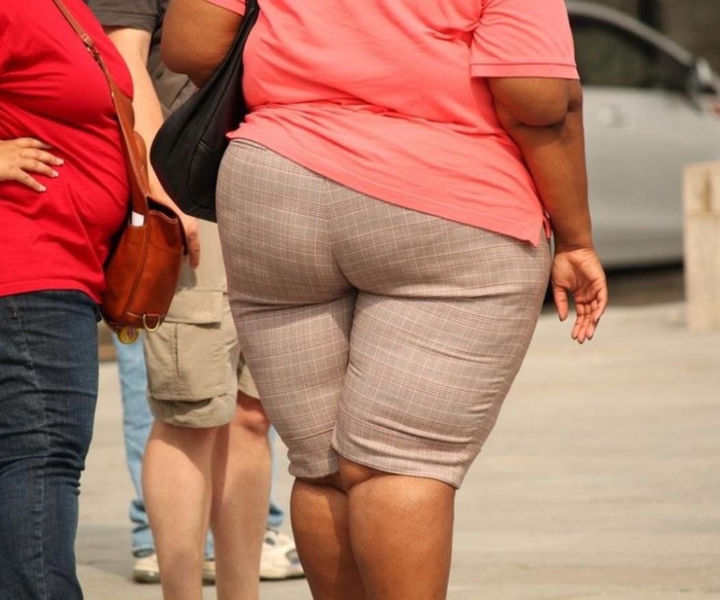 Las alertas de la OMS sobre la obesidad