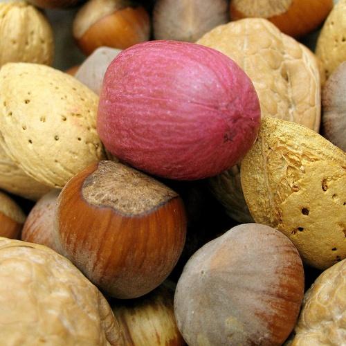 Tratamiento y detección de alergias alimentarias