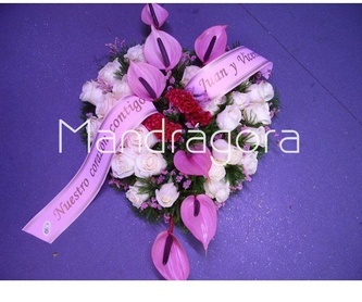 Plantas: Productos de Mandrágora Floristería