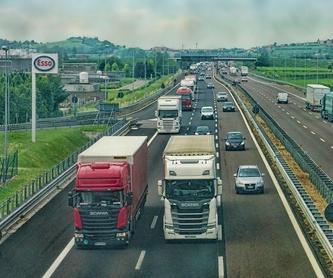 Exenciones del transporte: Servicios de Transportes TSL