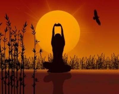Todos los productos y servicios de Masajes: Centro de Terapias Naturales Alicio Criado