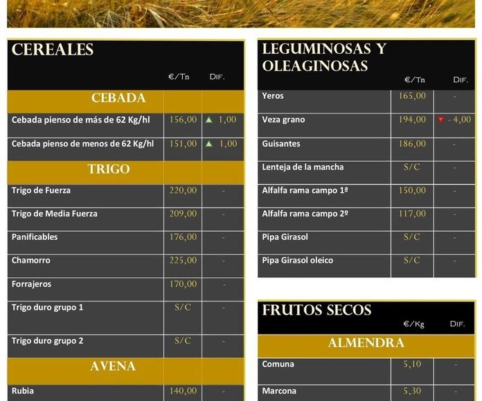 Lonja de Albacete 19/07/18