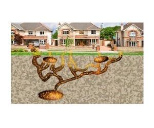 Tratamientos para termitas