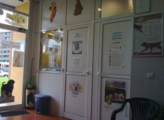 Hospitalzación mascotas Oviedo