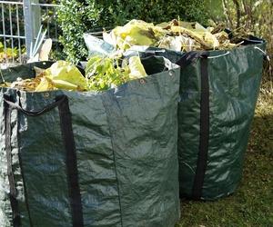 Transporte y gestión de residuos