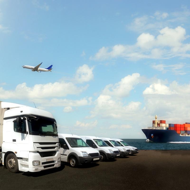 Transporte de mercancías internacional: Servicios de Transportes T.F.P