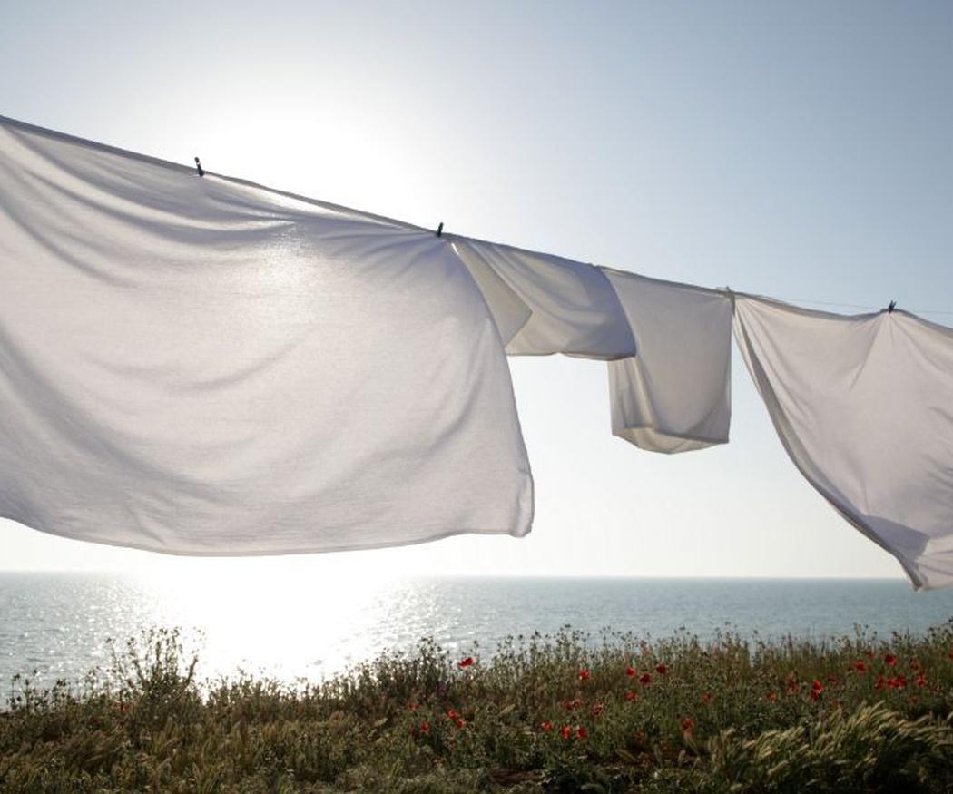 Curiosidades sobre los servicios de lavandería alrededor del mundo