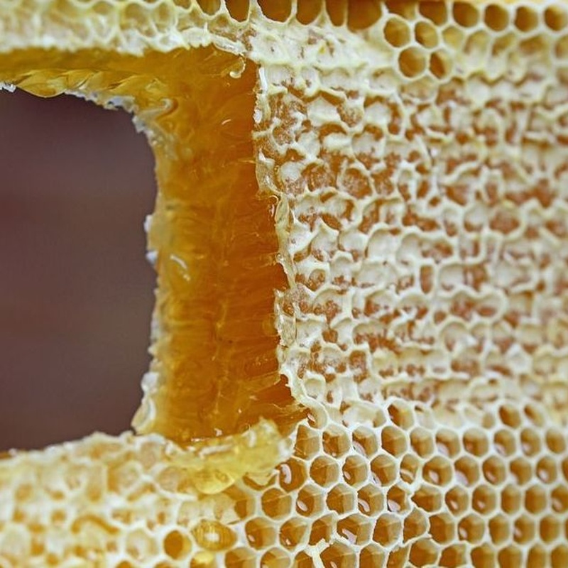 Cera de abeja en Caceres | Cera en bloque