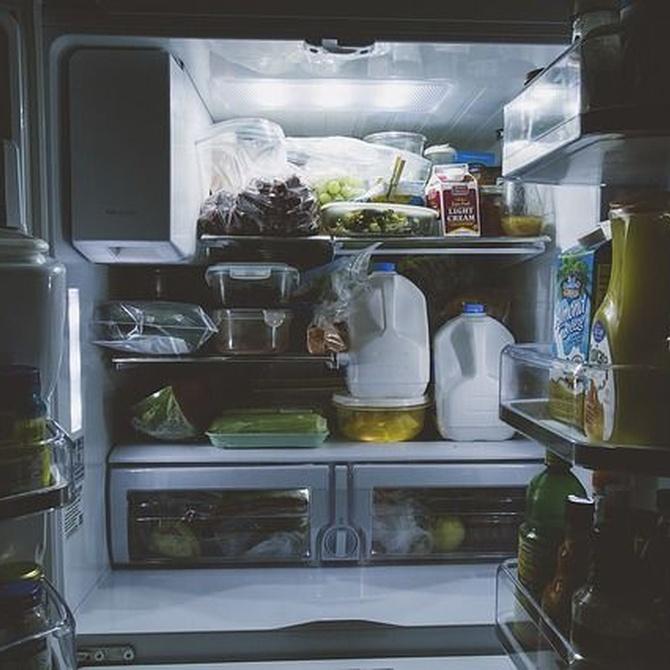 Ordena tu frigorífico y mejora su rendimiento