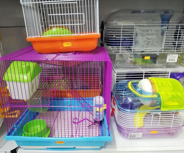 Pajarería y complementos para animales