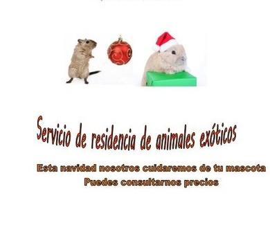 Residencia de animales exóticos en Madrid