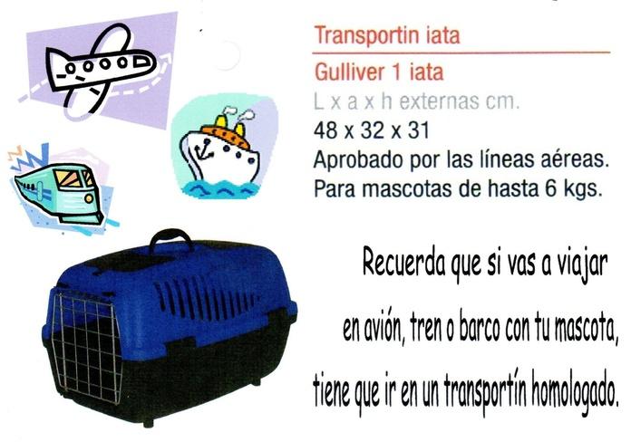 Viajar con mascotas: Consejos de Clínica Veterinaria Maestro Sosa