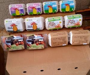 Huevos ecológicos y huevos camperos